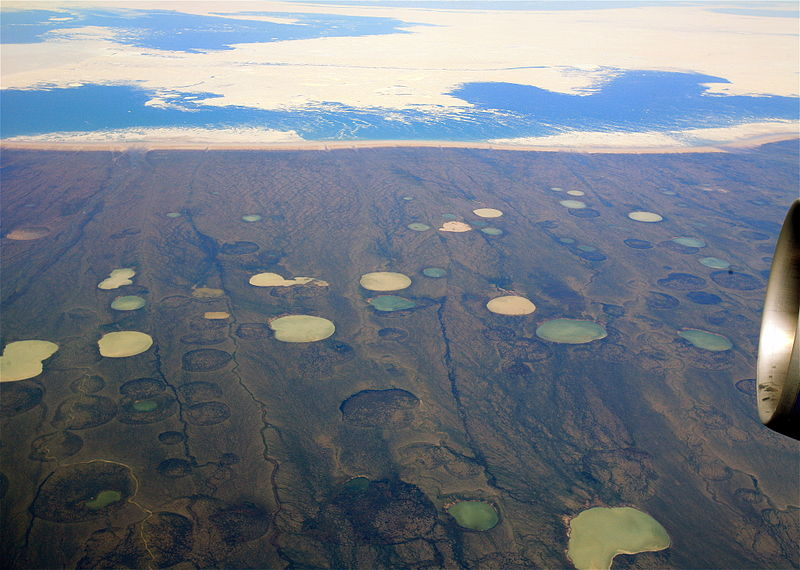 Thawing permafrost is revealing previously unknown viruses up to 30,000 years old.
